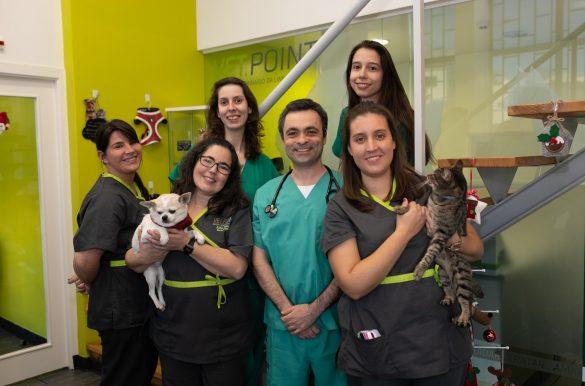 equipa da clínica vetpoint