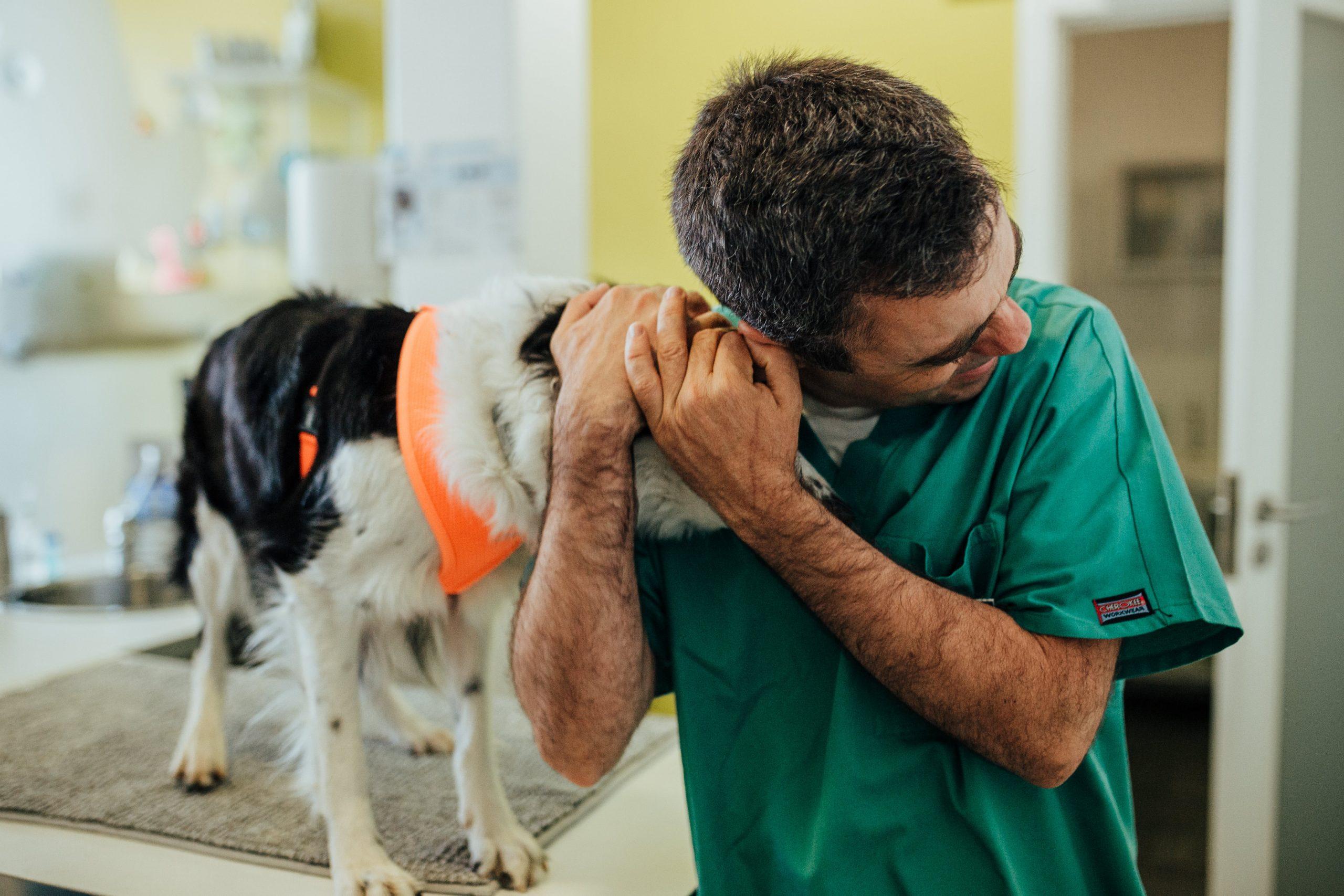 veterinário Nuno leite numa consulta