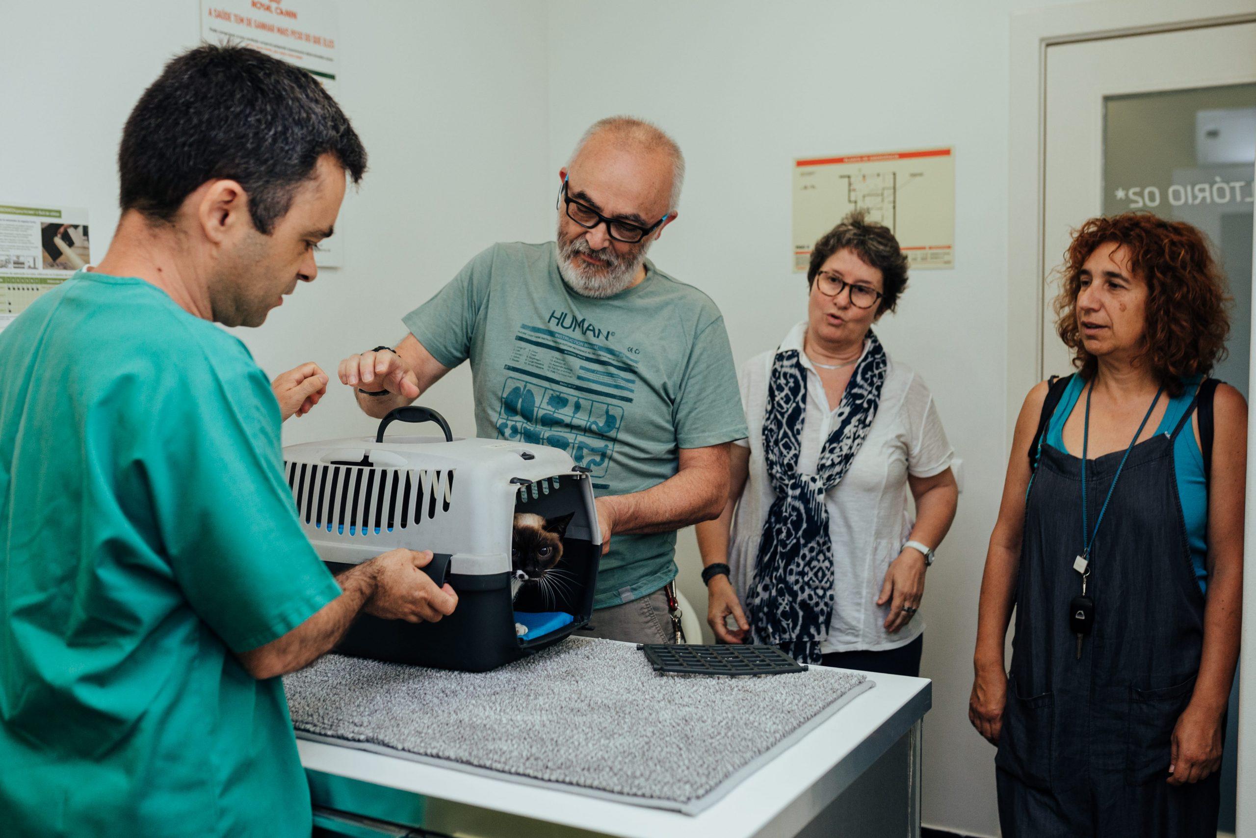 veterinário em Oeiras Nuno leite
