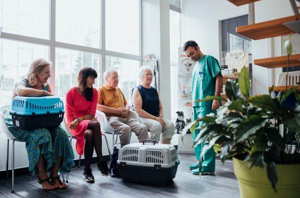 recepção da clínica veterinária Vetpoint